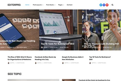 EditorPro WordPress Theme