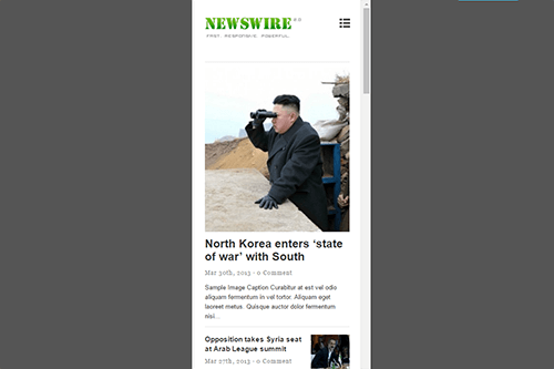 Newswire WordPress Theme Tablet Screenshot