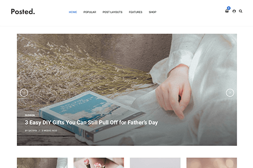 Posted WordPress Theme
