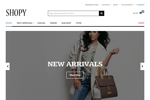 Shopy WordPress Theme
