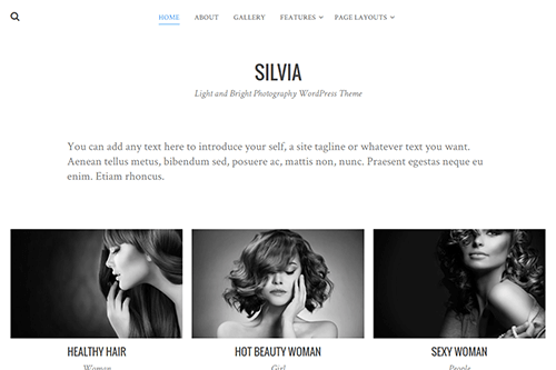 Silvia WordPress Theme Screenshot