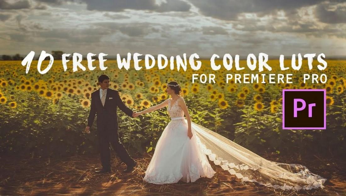10 Luts Warna Pernikahan Gratis
