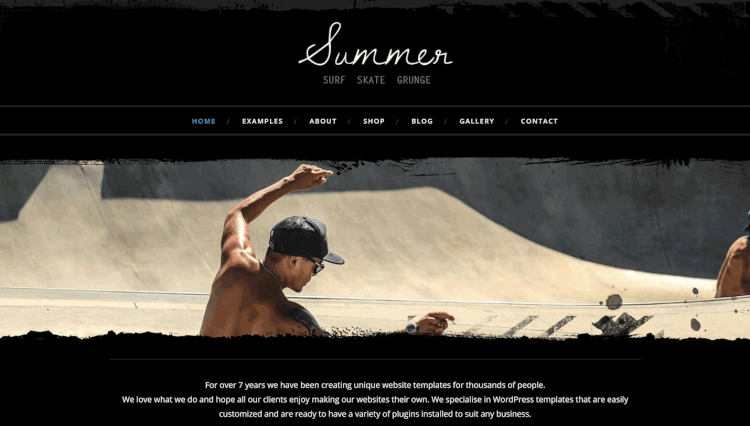 Summer - Ecommerce and Blogging Elementor WordPress Theme
