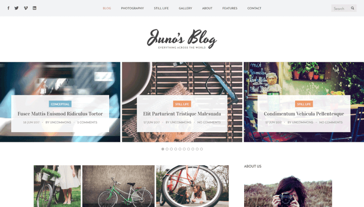 Juno - Photography and Magazine WordPress Theme
