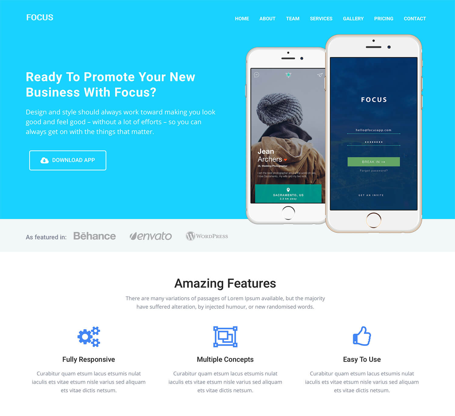 Focus Landing Page WordPress Theme