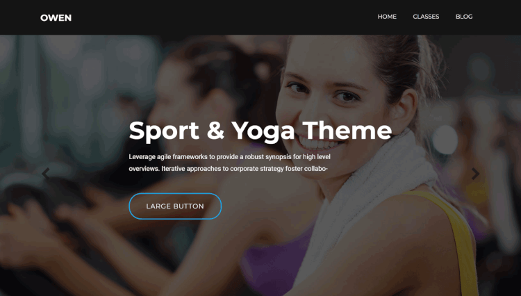 Owen - Personal Trainer and Gym WordPress Theme