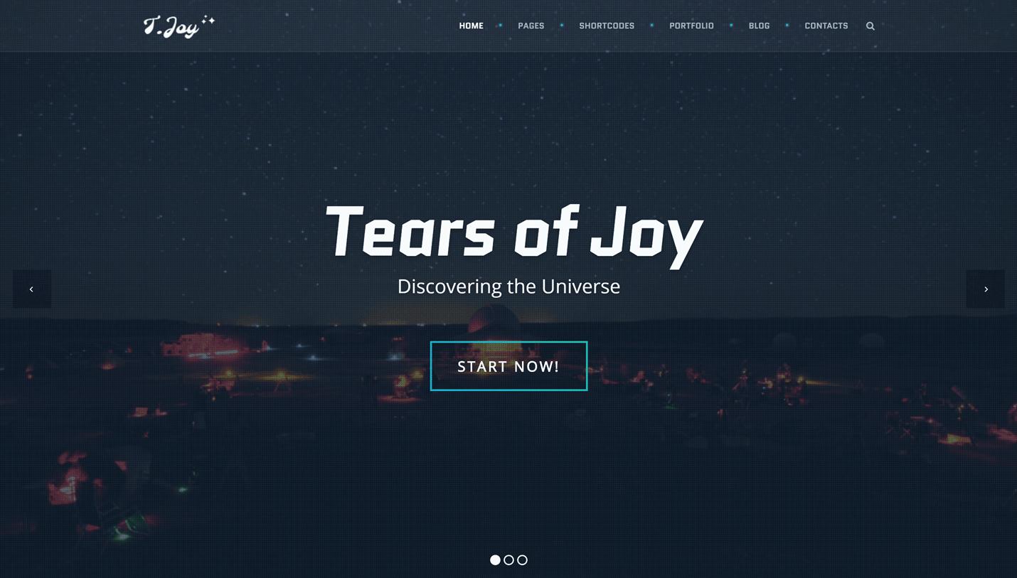 T.Joy
