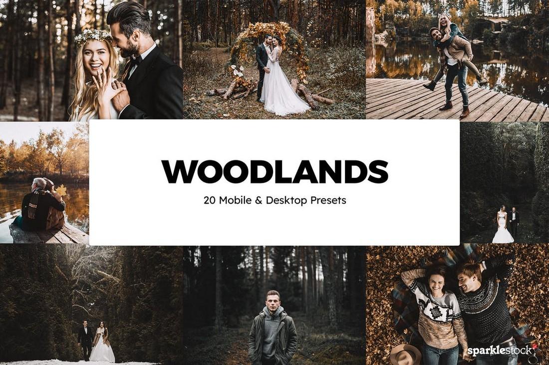20 Preset & LUT Woodlands Lightroom