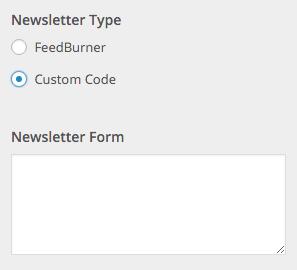 Beginner Customizer Newsletter Custom