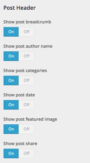 Beginner Customizer Post Header