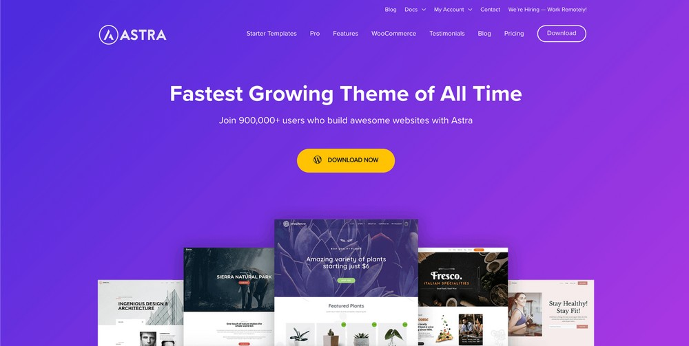 23. The Best and Most Popular WordPress Theme 2020