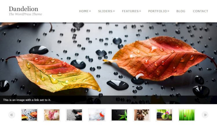Dandelion - Powerful Creative WordPress Theme