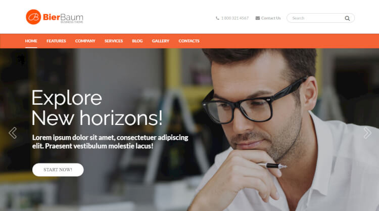 Bierbaum - Consulting Agency WordPress Theme
