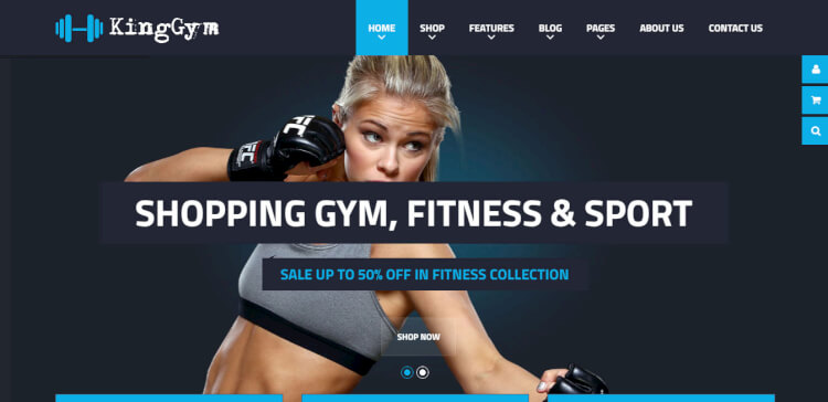 VG Kinggym - Fitness, Sport, and Gym WordPress Theme