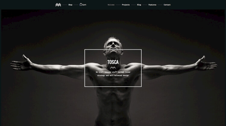 Tosca - Creative Fullscreen WordPress Theme