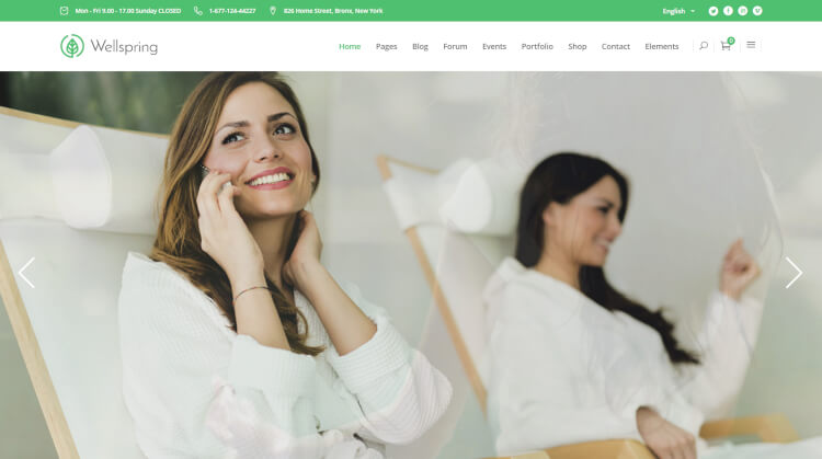 Wellspring - Health and Lifestyle WordPress Theme