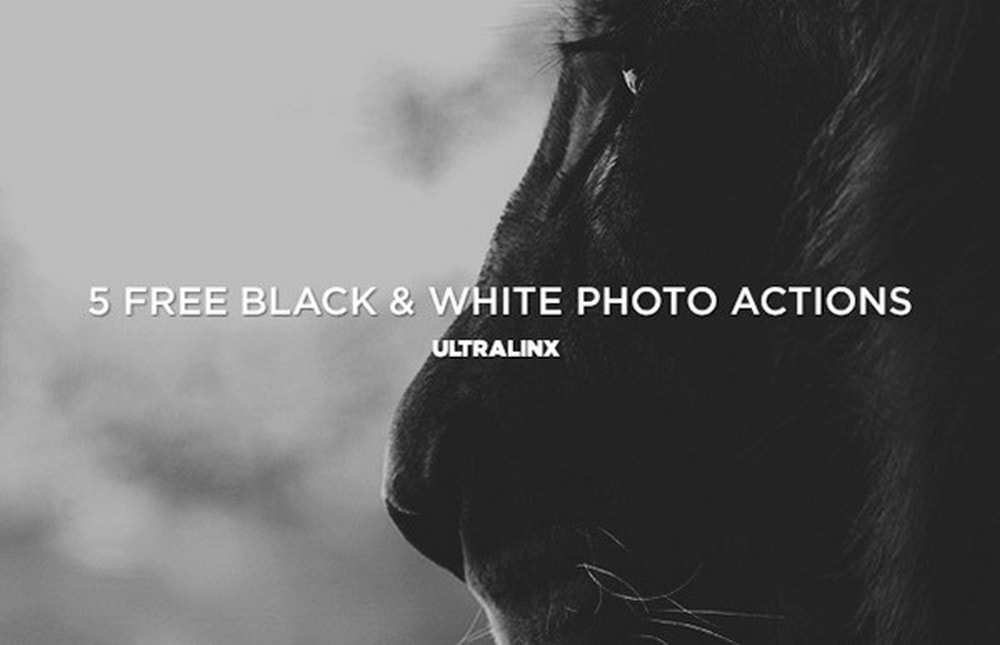 5 Free B&W Photoshop Actions