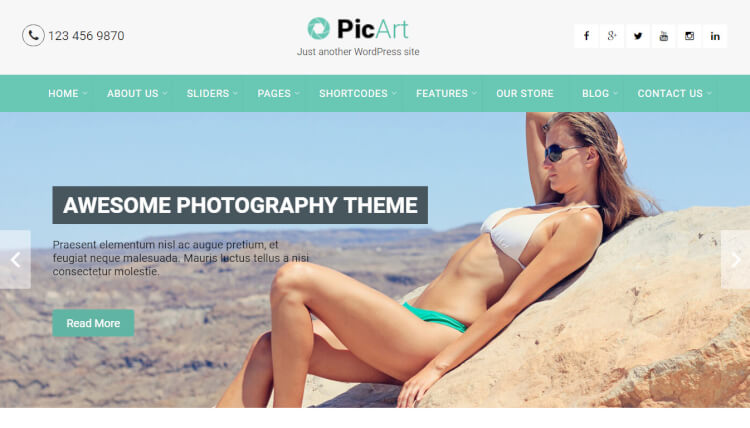 PicArt - Creative Slideshow WordPress Theme