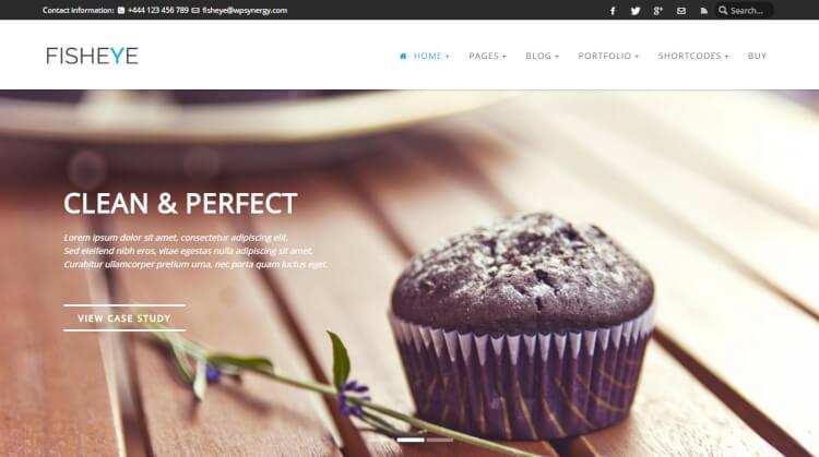Fisheye - Multi-Purpose Slideshow WordPress Theme
