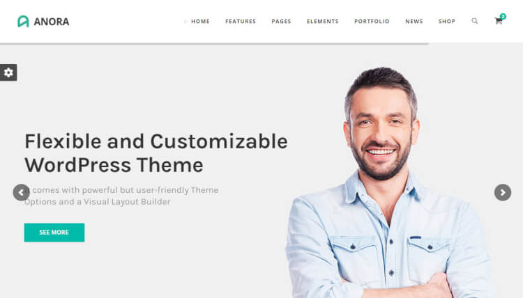 Anora - Business & Corporate WordPress Theme