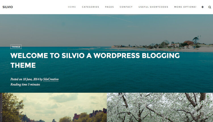 Silvio - Travel Agency WordPress Theme