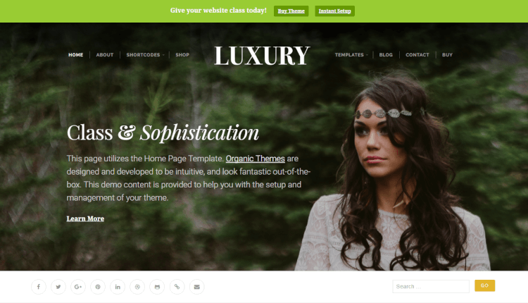 Luxury Theme - Stylish Luxury WordPress Theme