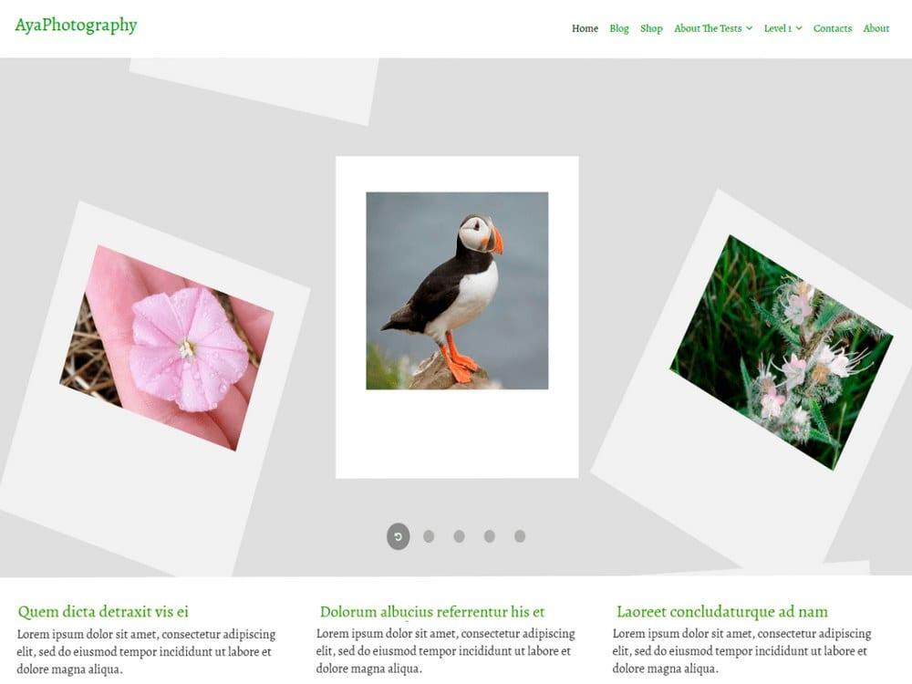 AyaPhotography - Free WordPress Photography Theme