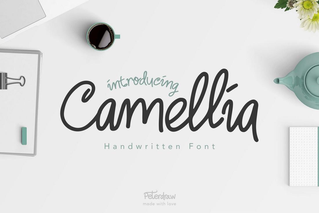 Camellia - Creative Handwritten Font