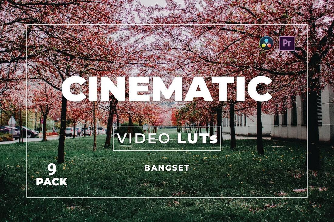 Bundel Cinematic Premiere Pro LUTs