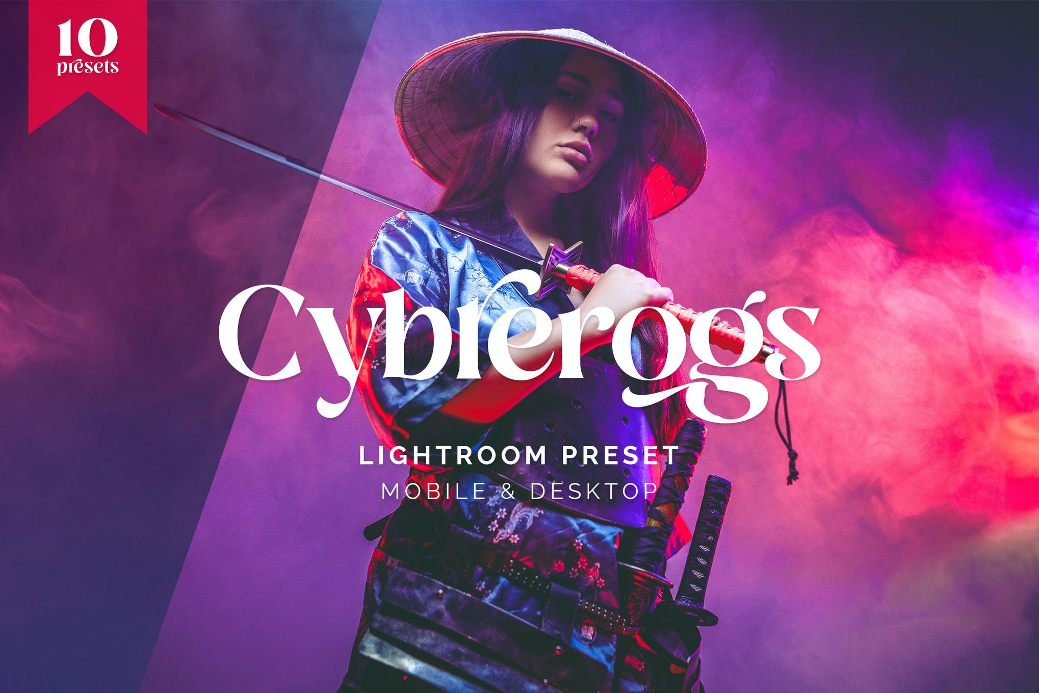Cybrerogs Lightroom Presets