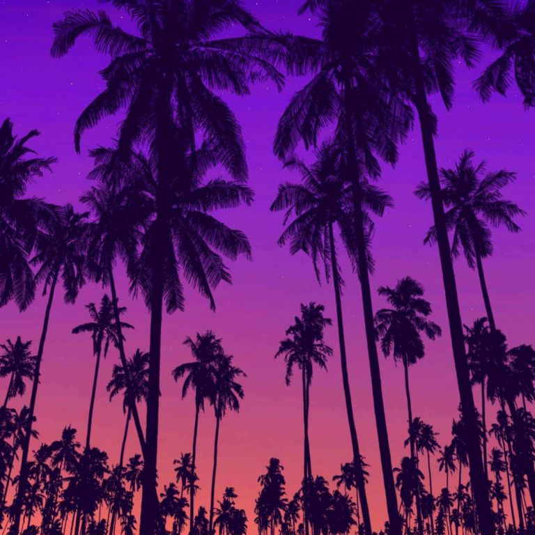 Free Palm Tree Brushes for Procreate