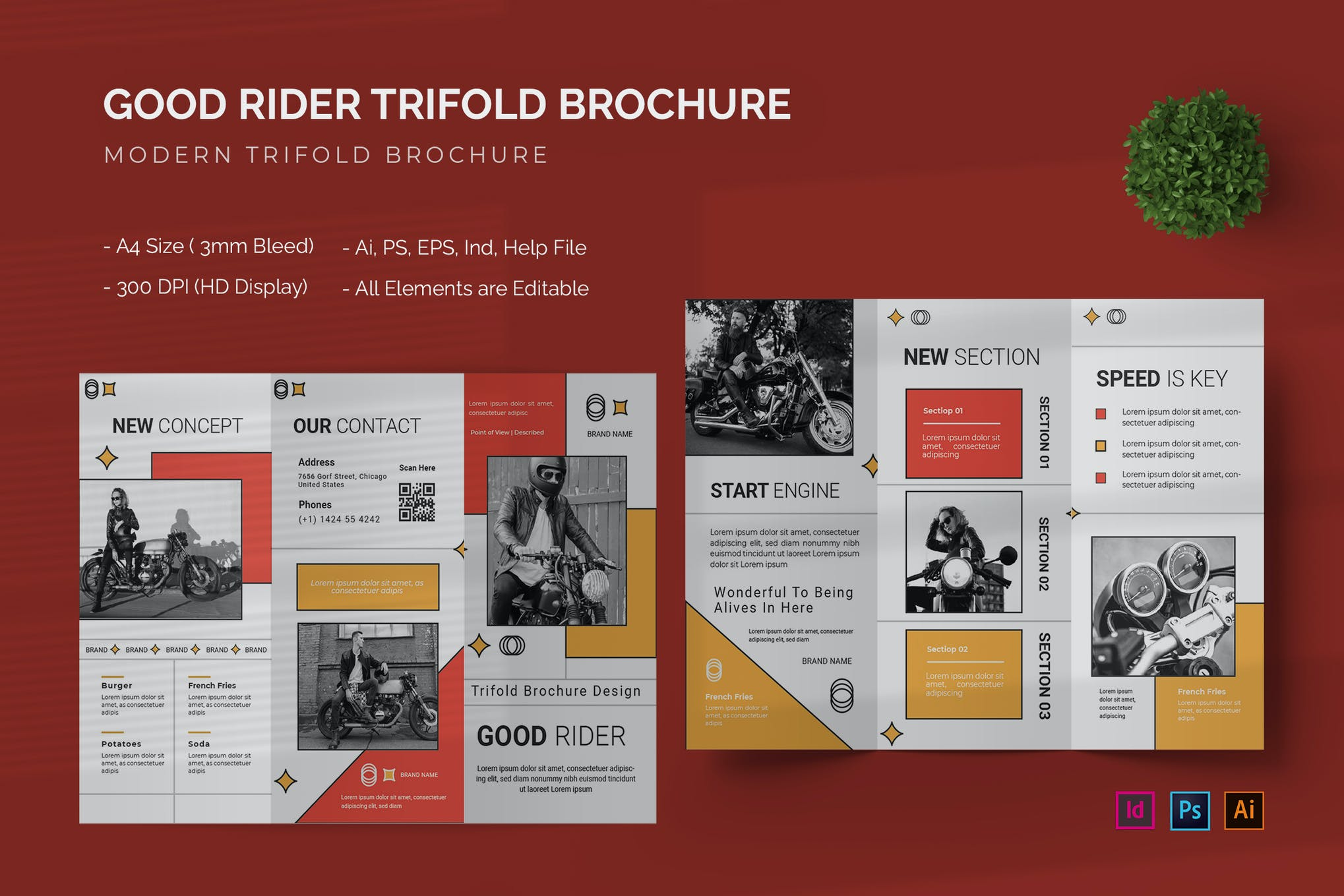 Good Rider - Trifold Brochure Template