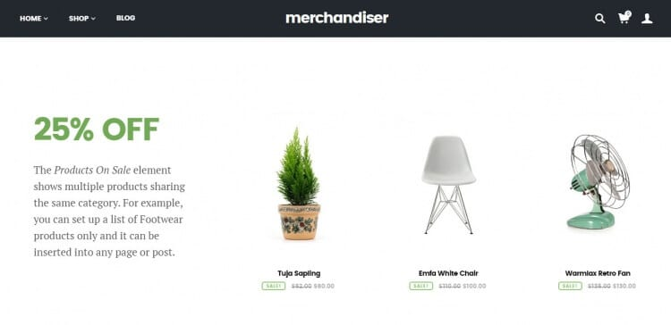 Merchandiser Review Sale Products