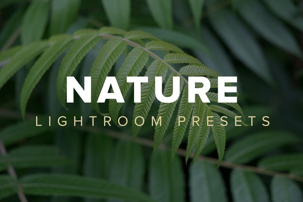 Nature Lightroom Presets