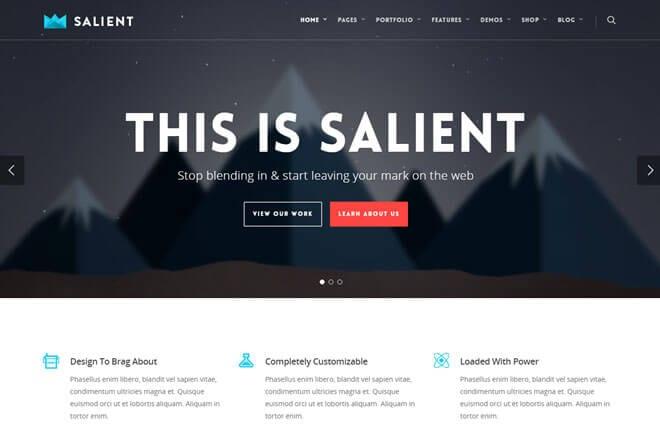 Salient WordPress Theme Review - Themelantic