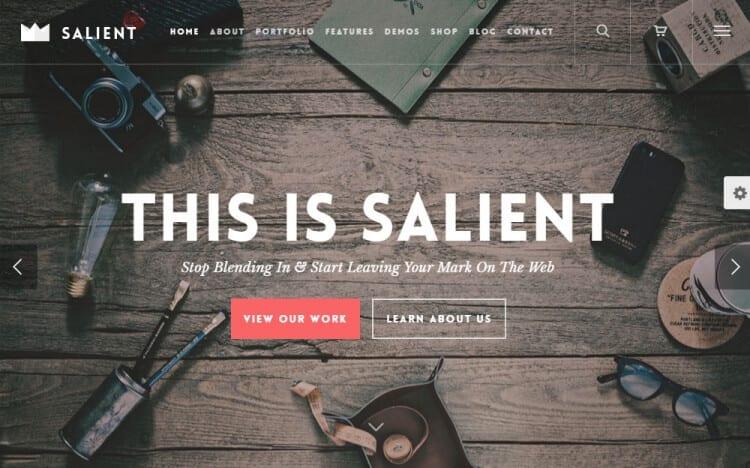 Salient WordPress Theme Review Agency Ascend Demo