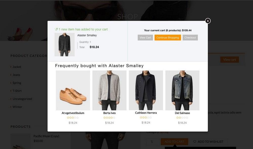 WooCommerce Meningkatkan Penjualan 2