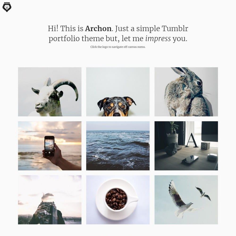 archon-tumblr-portfolio-theme