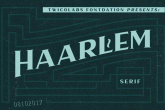 20 Best Art Deco Fonts 2021 (Modern Script, Serif & More)