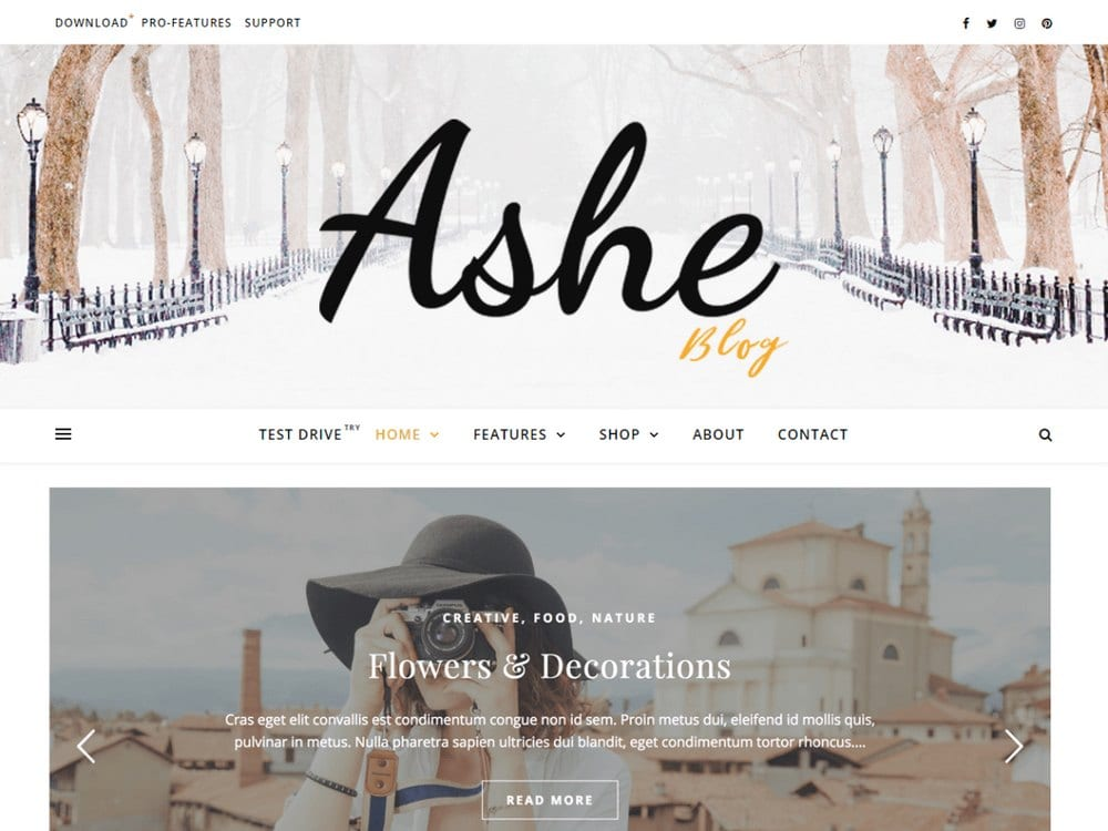 ashe-free-wordpress-theme