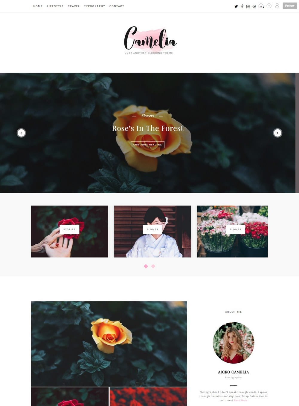 camelia-cute-tumblr-theme