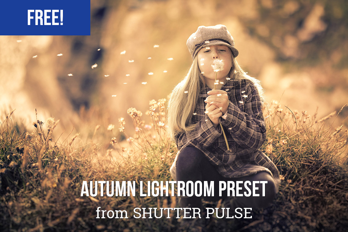 preset Lightroom jatuh bebas