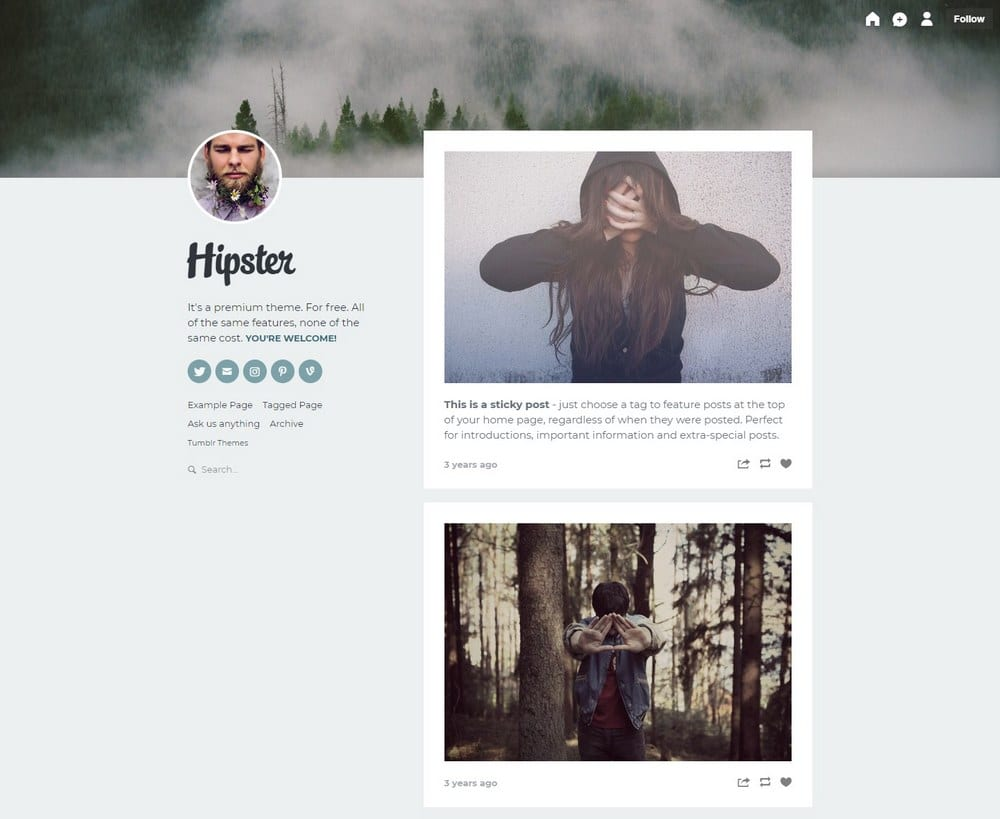 hipster-one-column-tumblr-theme