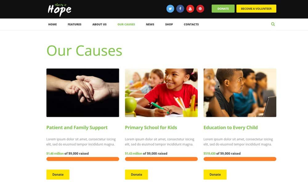 hope-donations-example