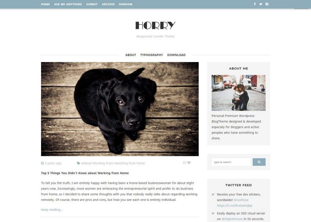 horry-two-column-tumblr-theme