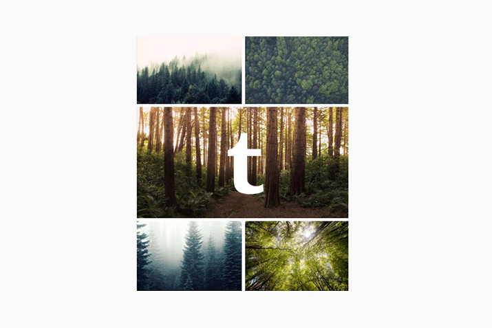 How to Make a Moodboard on Tumblr