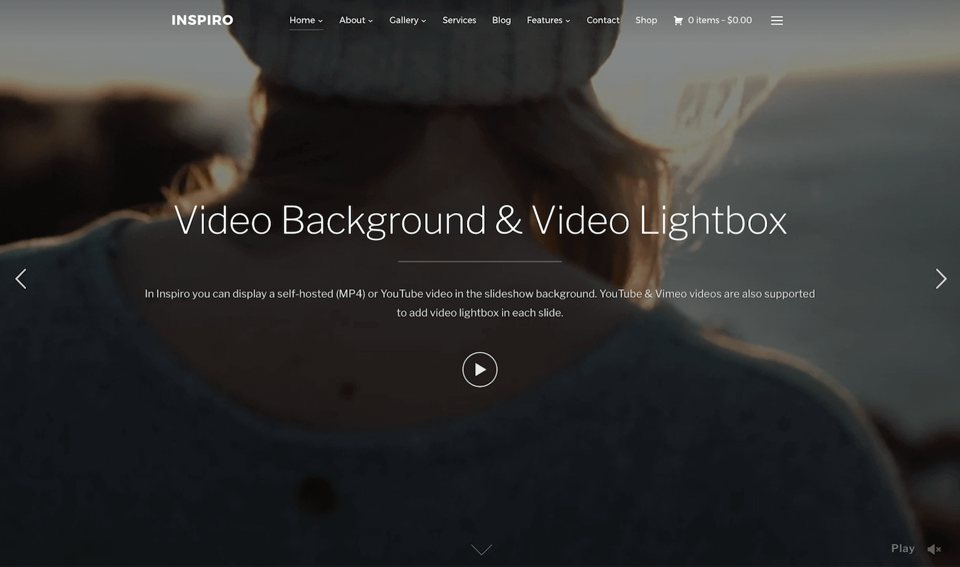 39+ Best Video Background WordPress Themes 2018 - Theme Junkie