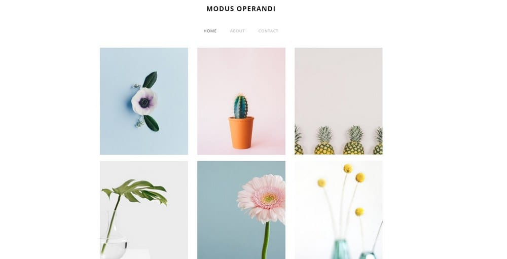 modus-weebly-theme