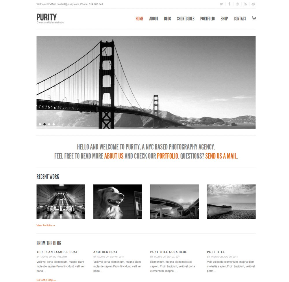 purity-easiest-wordpress-theme