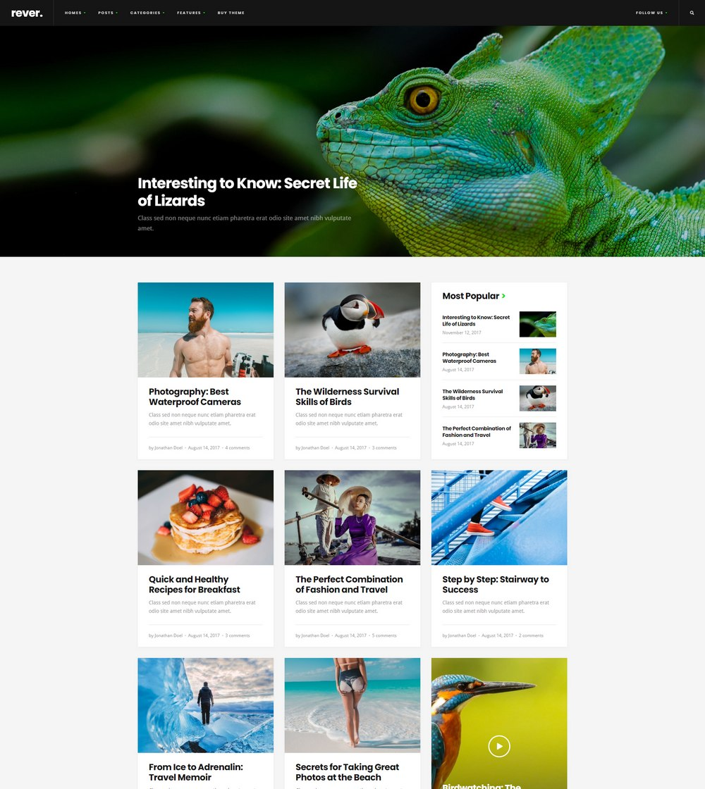 rever-easiest-wordpress-theme